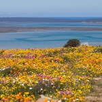 langebaan guest house accommodation